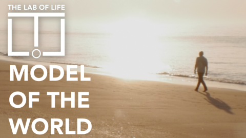 4. Model of the World
