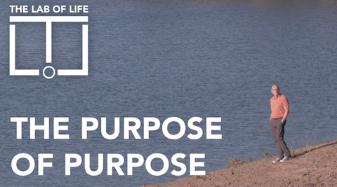 10. The Purpose of Purpose